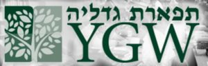Yeshiva of Greater Washington logo
